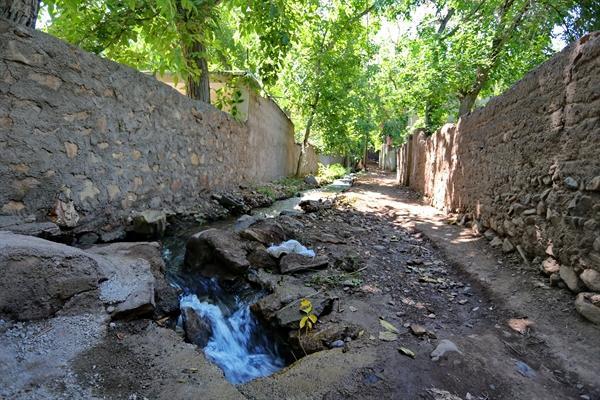 سومین جشنواره گردو در شهرستان تفرش برگزار می گردد