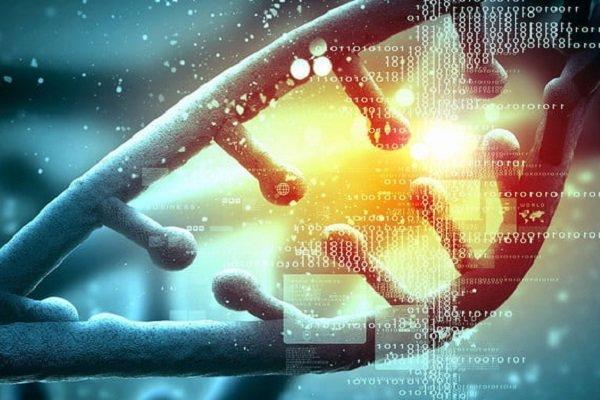 ثبت 11 ژن گیاهی توسط محققان ایرانی در پایگاه بیوتکنولوژی آمریکا