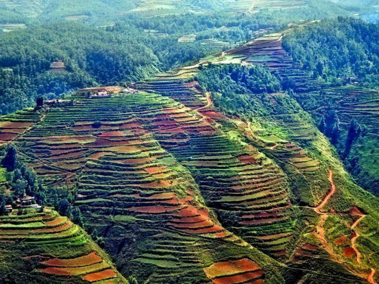 آشنایی با دانگچوآن چین شهری با مزارع پلکانی