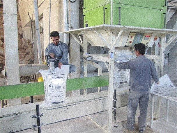 فعالیت کارخانجات آرد خراسان شمالی با یک سوم ظرفیت