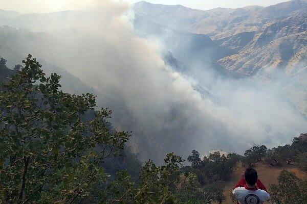 جدال آتش و جنگل در اندیکا به روز نهم رسید