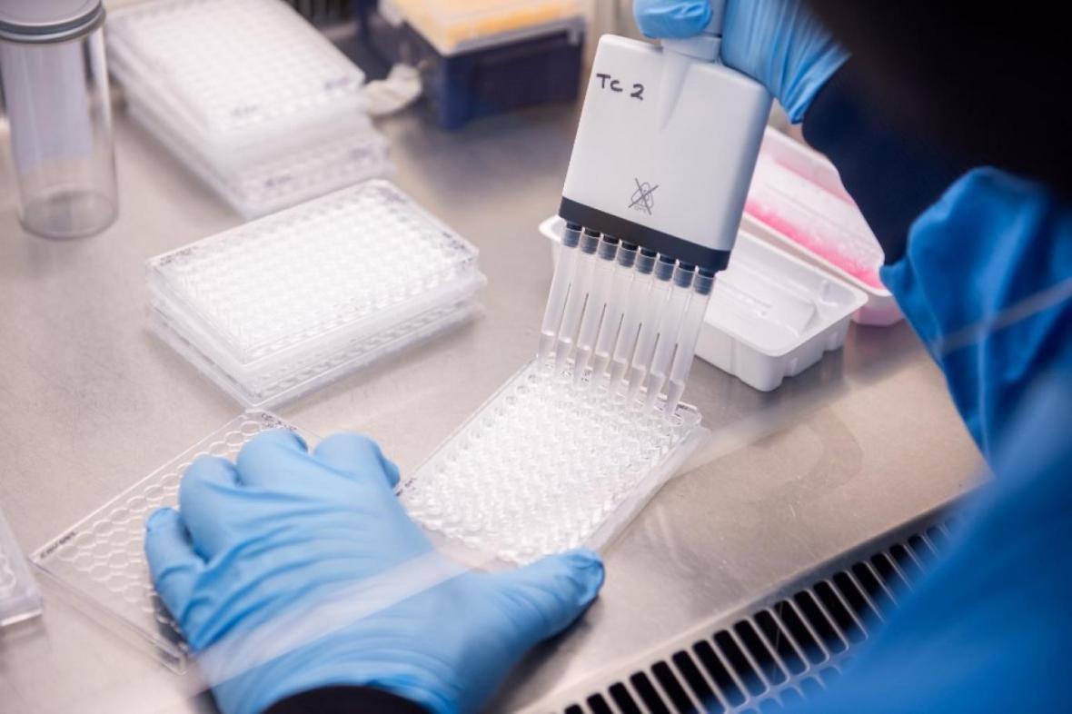 واکسن آکسفورد با دوز پایین اثربخشی بیشتری دارد؟