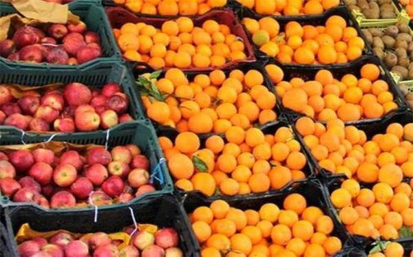 3 هزار تُن پرتقال و هزار تُن سیب سهمیه میوه شب عید استان تهران است