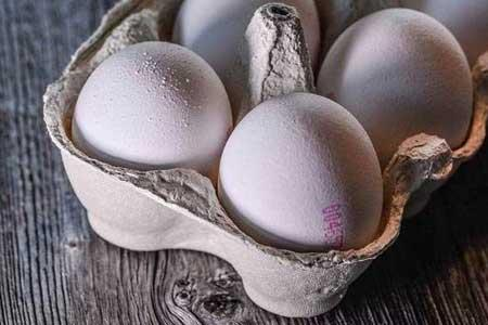 توقف صادرات تخم مرغ ، کاهش قیمت در راه است