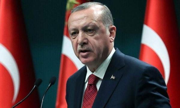 اردوغان: ترکیه در پی توسعه مکانیسم دفاع سایبری است
